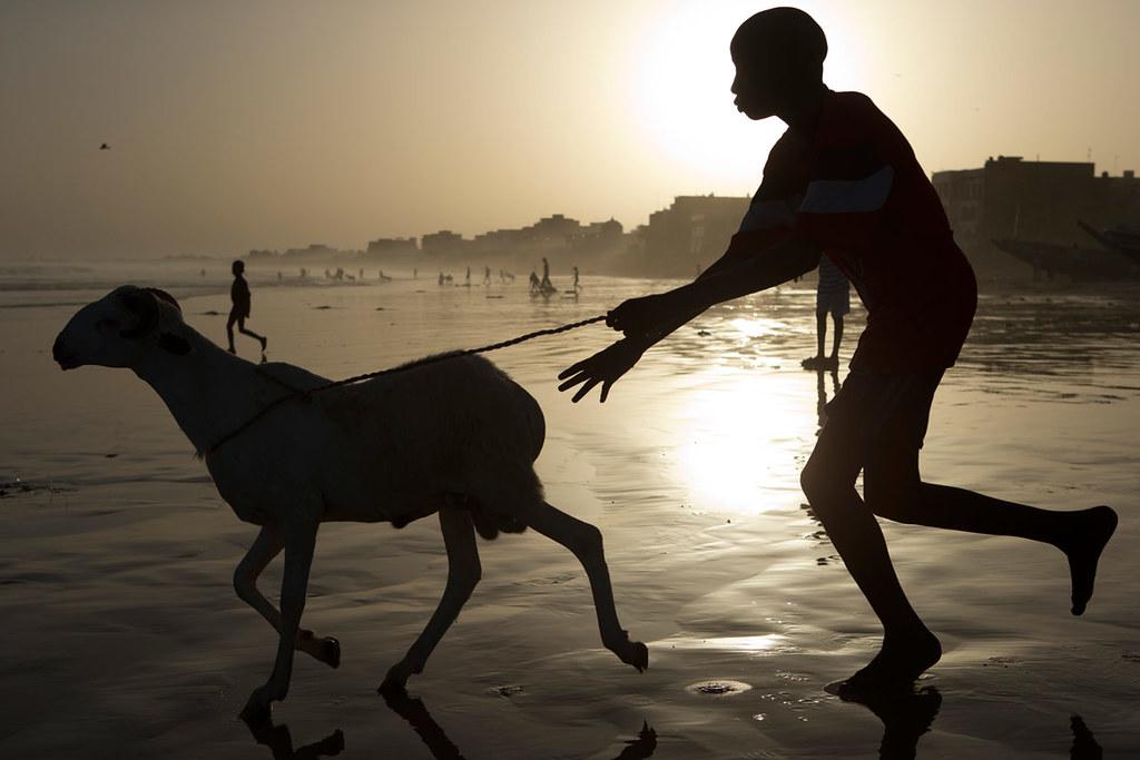 APTOPIX Senegal Eid al Adha