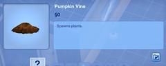 Pumkin Vine