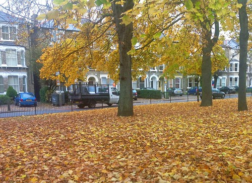 Fall at Blackheath Royal Standard width=