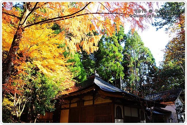 高山寺 (10).JPG