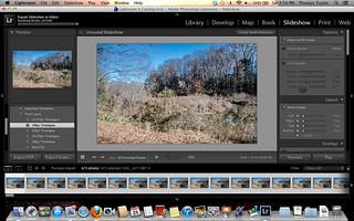 Screen Shot 2012-11-24 at 4.34.43 PM