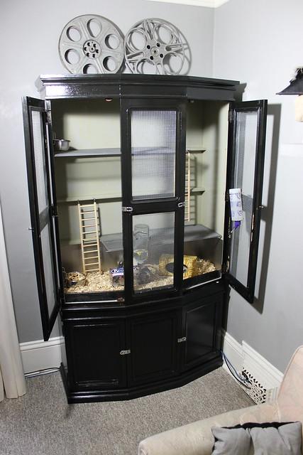 Rat Cabinet
