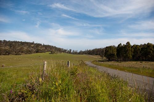SD 108 Tasmanian Midlands 25
