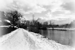 Schnee an der Limmat