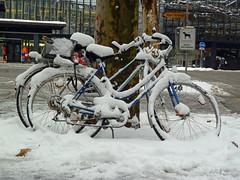 Snowcycle