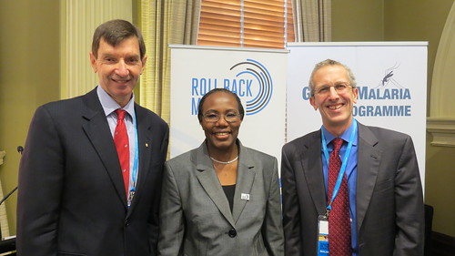 Professor Graham Brown, RBM Board Member (left); RBM ExD, Dr Nafo-Traore (center); and WHO GMP Director, Dr Robert Newman