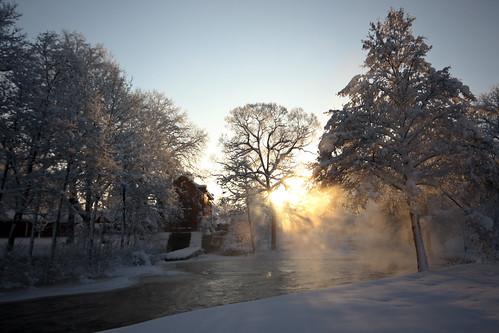 winter light sunset snow cold tree water landscape golden warm day sebastian swedish fransson frasse21