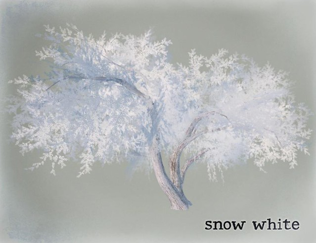 GardenTree05 - snow white