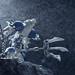 Urtican Warrior by Dark-Alamez
