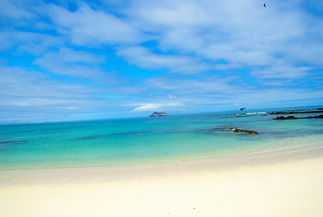 beach on galapagos islands