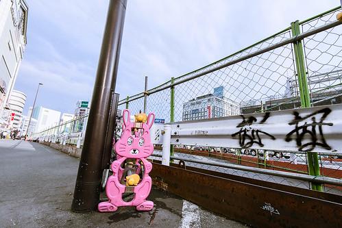 Shinjuku Rabbit