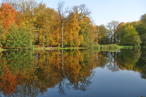 Autumn by the pond  (2 photos)