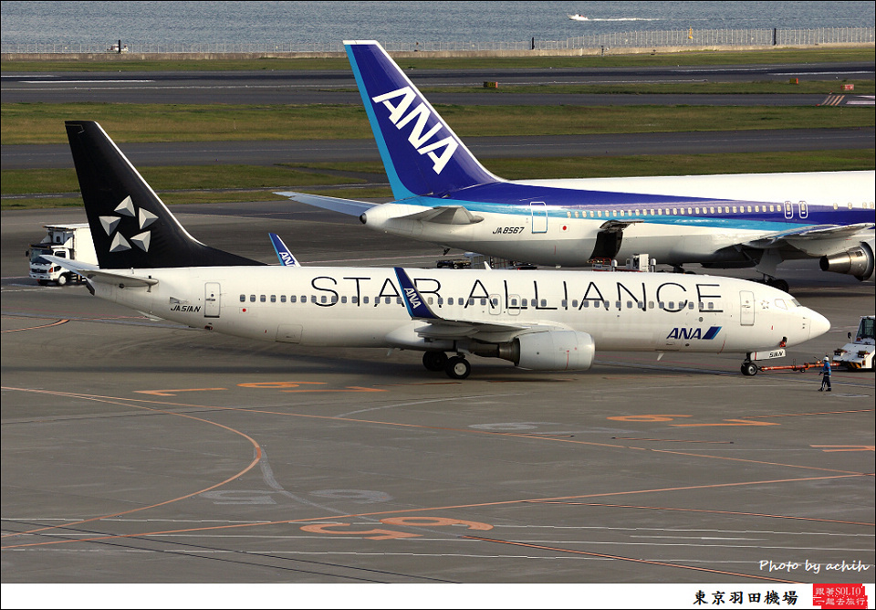 All Nippon Airways - ANA / JA51AN / Tokyo - Haneda International