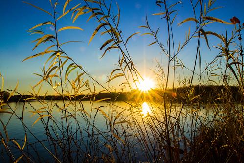 thanksgiving winter lake fall sunrise landscape unitedstates faded arkansas fayetteville