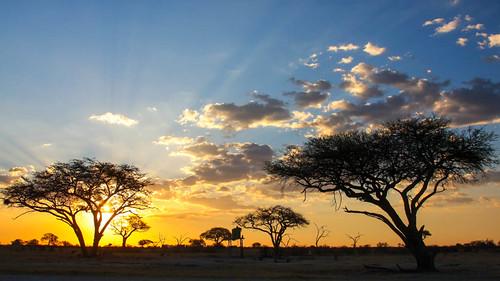 africa sunset safari zimbabwe nationalparks hwange bestcapturesaoi magicunicornverybest