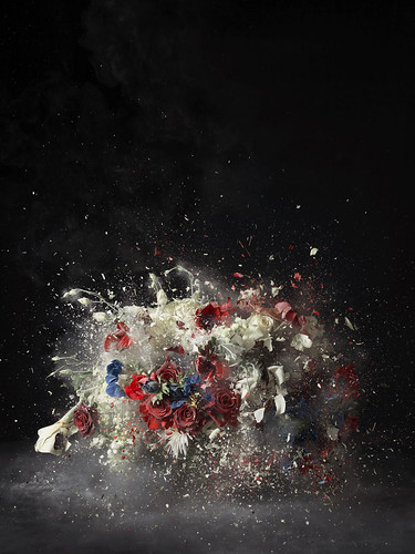 Ori Gersht Blow Up: Untitled 5, 2007