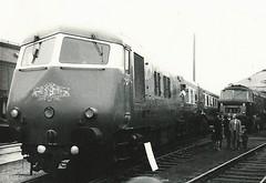 Class 251