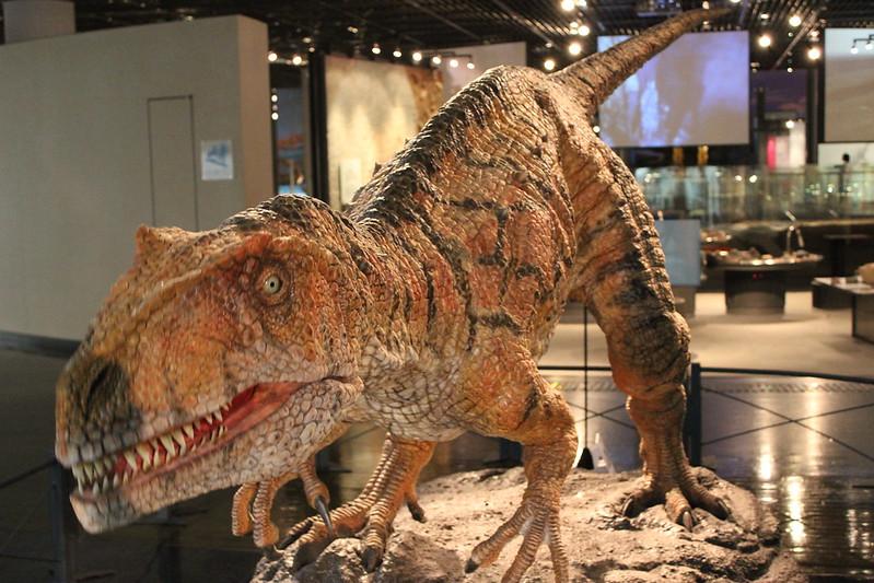 福井県立恐竜博物館 フクイラプトル・キタダニエンシス