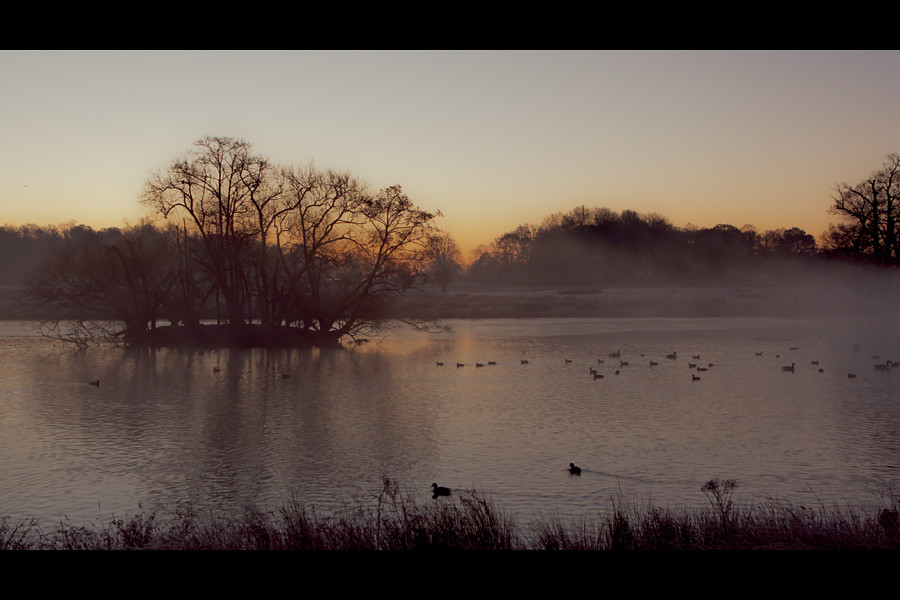 Richmond Park Sunrise over Pen Ponds