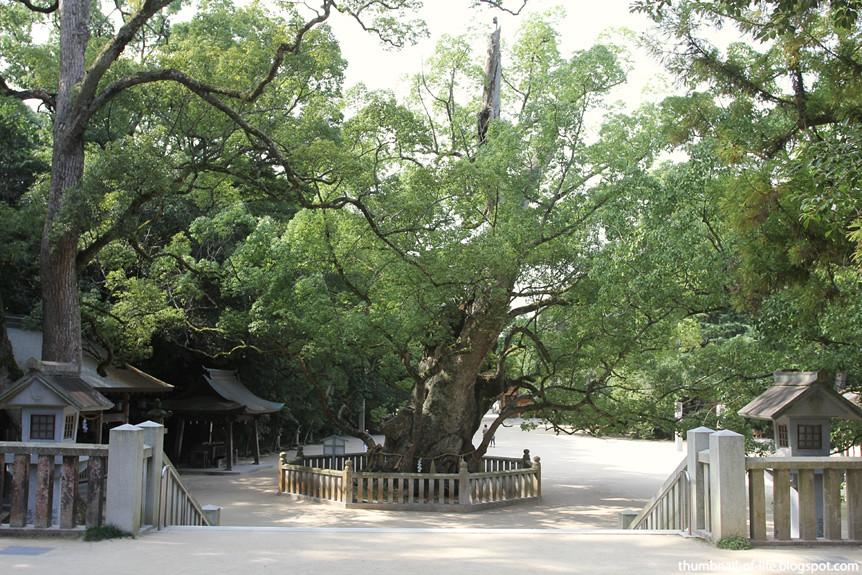 Ooyamazumi Jinja - Shimanami Kaido
