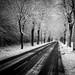 Route des Canadiens by CrËOS Photographie