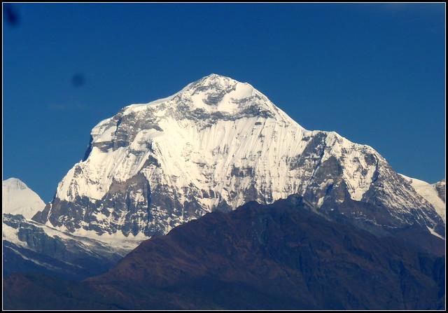 Dhaulagiri, the great white massif