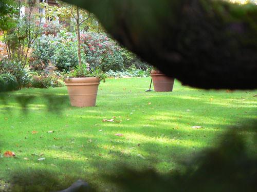 jardin chelsea 2.jpg