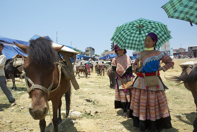 Horse Market in Bac Ha