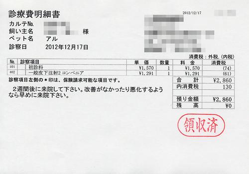診療費明細書(2012/12/17)