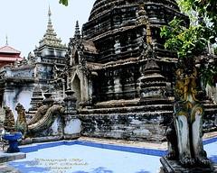 20100516_0324 Wat Pa Pao, วัดป่าเป้า