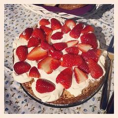 raspberry(0.0), pavlova(1.0), strawberry pie(1.0), strawberry(1.0), baked goods(1.0), whipped cream(1.0), frutti di bosco(1.0), produce(1.0), food(1.0), dish(1.0), torte(1.0), cuisine(1.0), mascarpone(1.0),