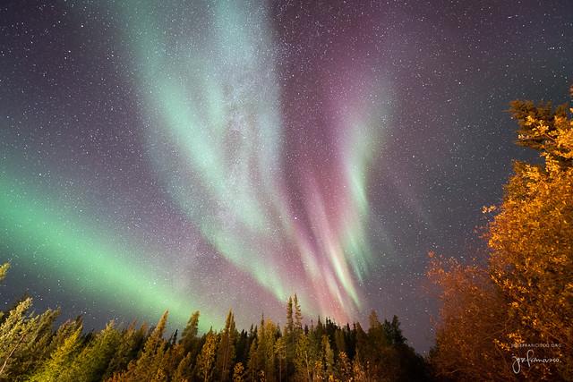 Autumnal auroras