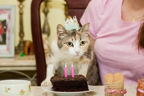 Happy Birthday Milly :)