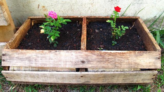 Caixa de verdura como floreira