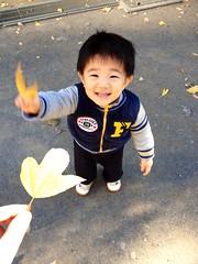 恵比寿公園にて葉っぱでじゃんけん 2012/12/9