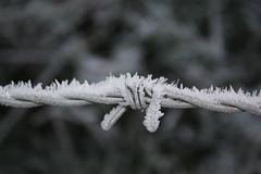December 2012 - Gloucestershire