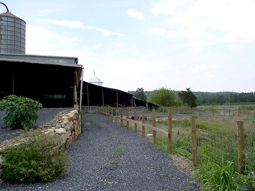A new livestock walkway and exclusion fencing will keep cattle out of the stream.