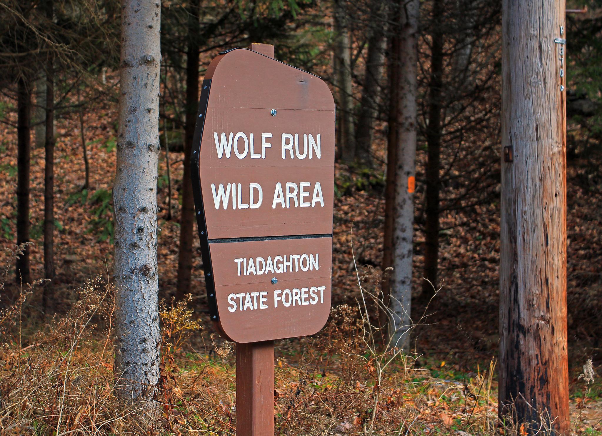 wolf run wild area pa