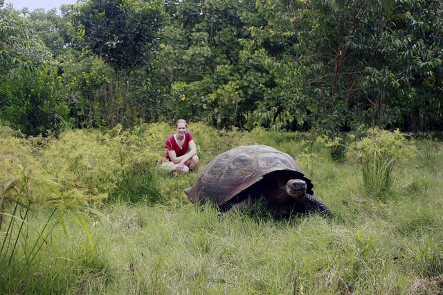 With a Giant Tortoise