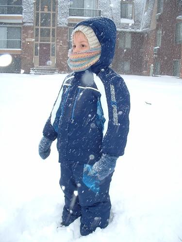 snowy day 12-27-12 3