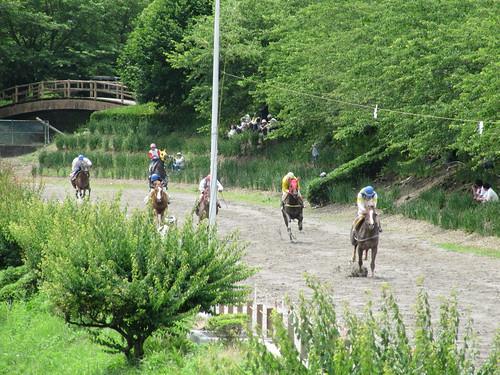 Tado Horse racing 多度草競馬
