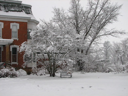 Narnia snow