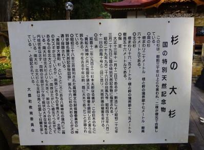 oosugi2013-2