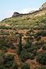 Kreta 2007-2 195