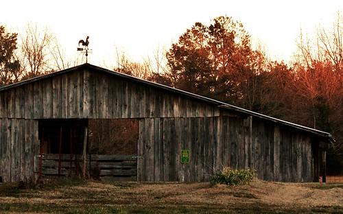 wood sunset barn rural woods rustic weathered arkansas weathervane redoak week3 themeweather 52in2013