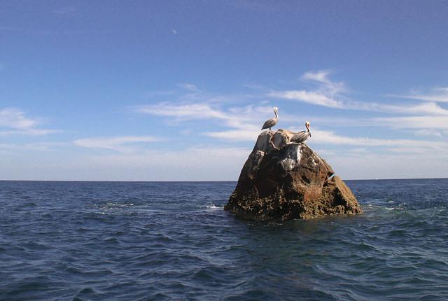 Los Cabos-64.jpg