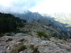 Boucle de la bergerie de Biancarellu : contournement de la forêt par la crête en vue de la bergerie