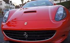 race car(1.0), automobile(1.0), automotive exterior(1.0), ferrari 599 gtb fiorano(1.0), vehicle(1.0), performance car(1.0), automotive design(1.0), ferrari california(1.0), bumper(1.0), ferrari s.p.a.(1.0), land vehicle(1.0), luxury vehicle(1.0), supercar(1.0), sports car(1.0),