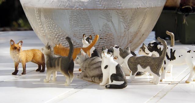 je cherche des figurines chats 8277142567_5675ce4be6_z