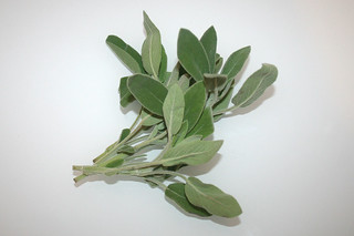 10 - Zutat Parmesan / Ingredient sage